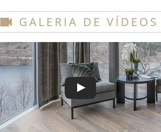 galeria-de-videos_5